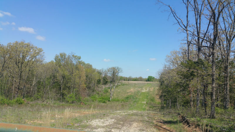 245.5 acres Whipperwill Rd. Versailles, Mo.